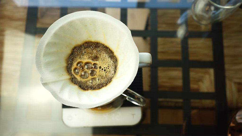 Pasos Preparar Café Hario V60 Bloom
